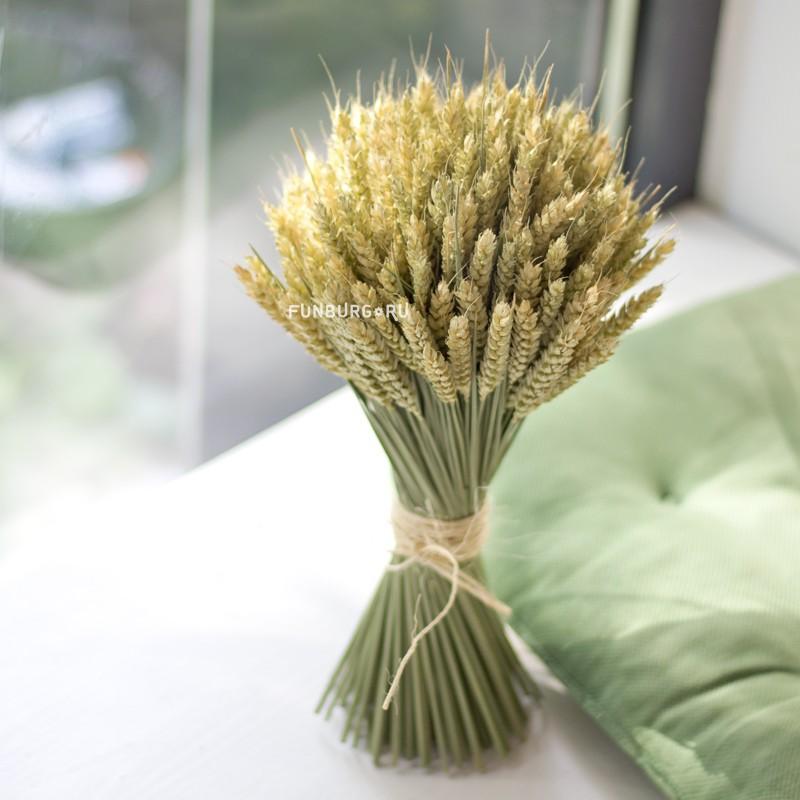 Букет из сухоцветов «Пшеница»  - купить со скидкой