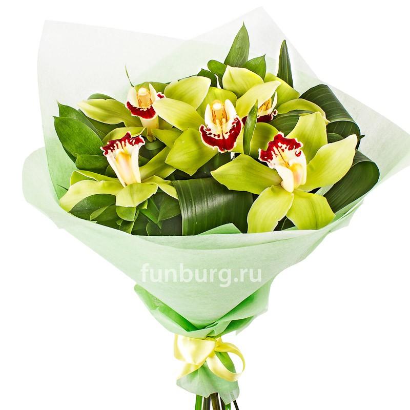 Купить Букет орхидей «Изумрудный»