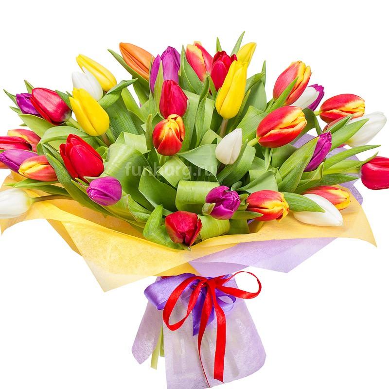 Букет тюльпанов «Незнакомка»