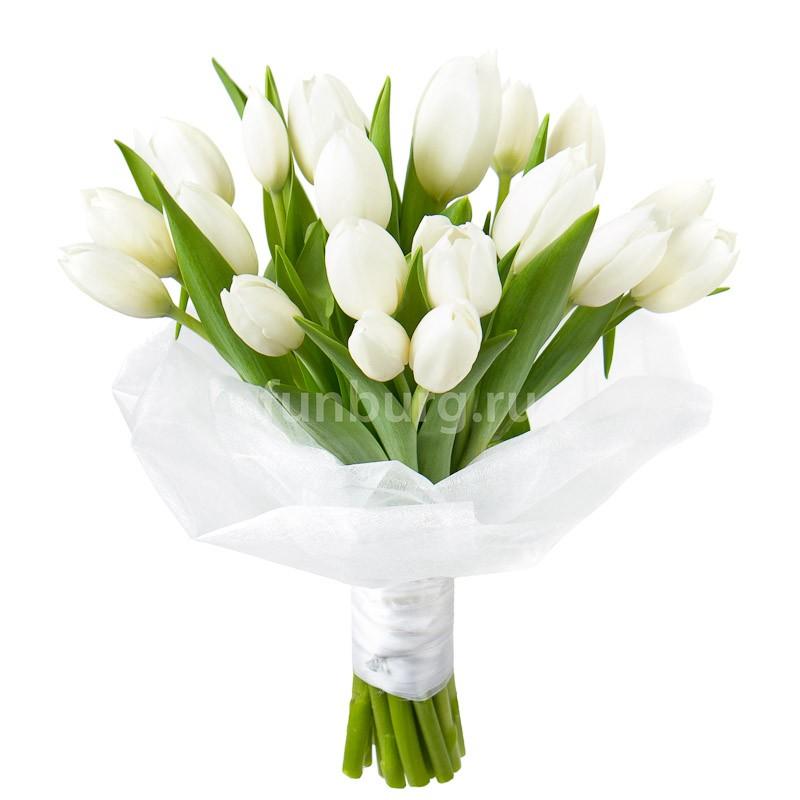 Букет тюльпанов «Снежная королева»