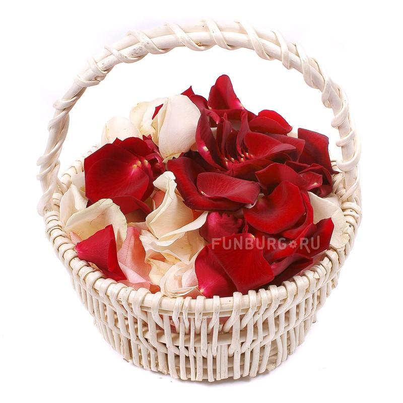 «Лепестки роз» фото