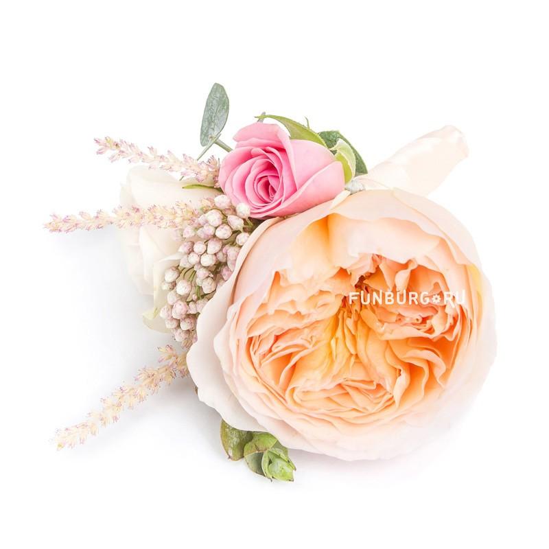 Бутоньерка «Рококо»Бутоньерки<br> <br>Состав:<br><br><br>пионовидная роза, кустовая роза, астильба, озотамнус, эвкалипт, лента атласная, булавка для бутоньерок<br><br>