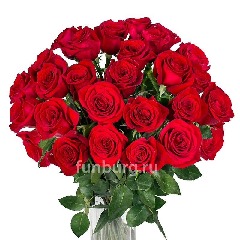 Розы 70 см (Голландия/Эквадор)Цветы<br><br> Состав:<br><br><br> розы Эквадор/Голландия<br> цвет роз на Ваш выбор<br> длина стебля 70 см<br> размер бутона 5-8 см<br><br><br>