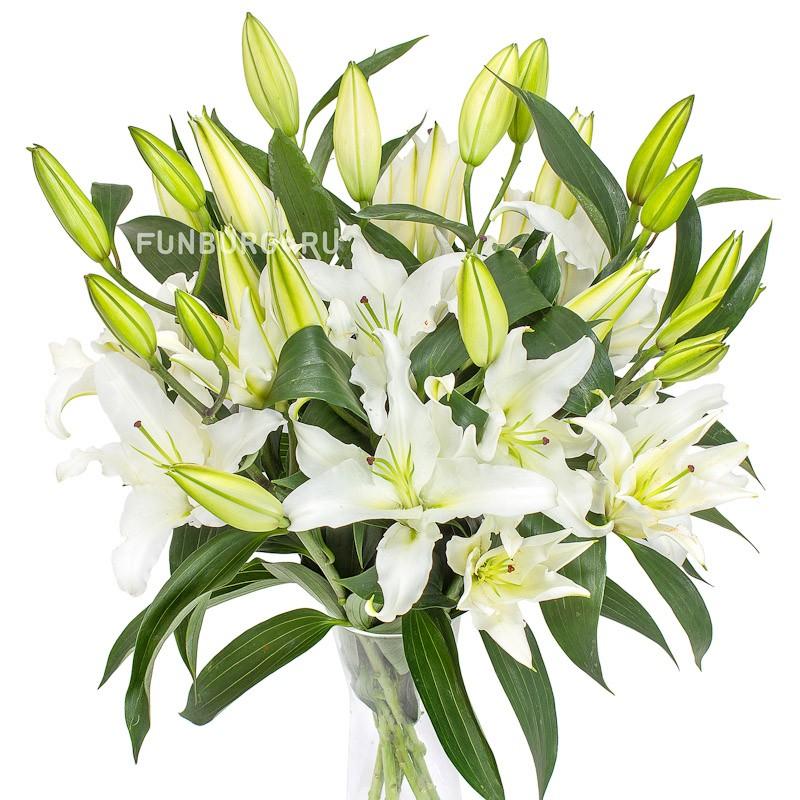 ЛилииЦветы<br><br> Состав:<br><br><br> голландские лилии одного из возможных цветов<br><br><br>