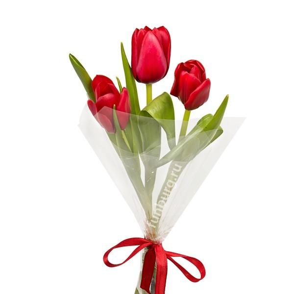 Букет из тюльпанов №1Букеты оптом на 8 Марта<br> <br>Указана розничная цена.<br><br>