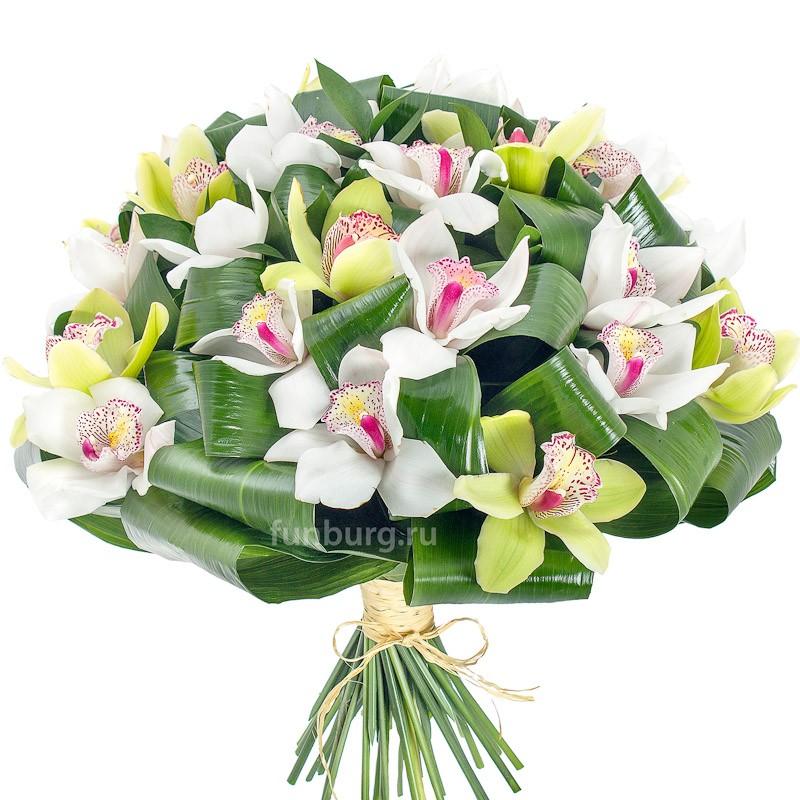 Букет орхидей «Венера»с орхидеями<br><br>
