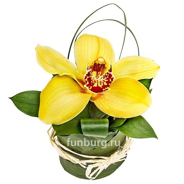 Цветок орхидеиБукеты оптом на 8 Марта<br> <br>Размер:<br><br><br>высота 15 см, диаметр 10-15 см<br><br>
