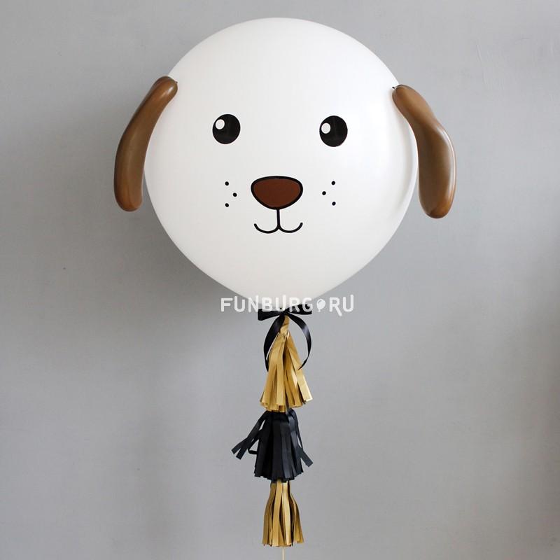 Метровый шар «Пёс»Метровые шары<br>Диаметр: 70-80 смПроизводитель: Sempertex, Колумбия<br>Состав: метровый шар с декором, 3 кисточки, груз.<br>Цвет шара и декора может быть изменён по вашему желанию.<br>