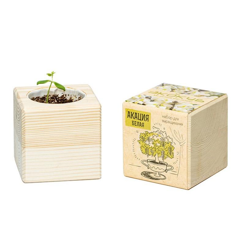 Экокуб «Акация белая»Эко-наборы<br> <br>Комплект:<br><br><br>деревянный горшочек, грунт, семена растения, инструкция.<br><br><br> <br>Размер:<br><br><br>8?8?8 см<br><br><br> <br>Страна производитель:<br><br><br>Россия<br><br>