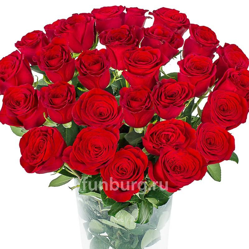 Розы 80-90 см (Голландия/Эквадор)Цветы<br><br> Состав:<br><br><br> розы Эквадор/Голландия<br> цвет роз на Ваш выбор<br> длина стебля 80-90 см<br><br><br>
