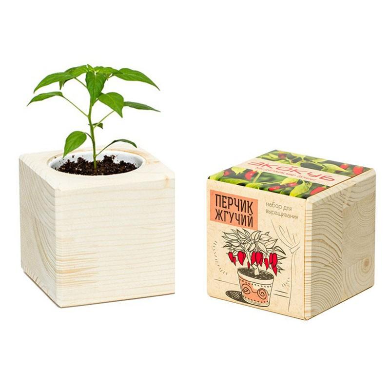 Экокуб «Перчик жгучий»Эко-наборы<br> <br>Комплект:<br><br><br>деревянный горшочек, грунт, семена растения, инструкция.<br><br><br> <br>Размер:<br><br><br>8?8?8 см<br><br><br> <br>Страна производитель:<br><br><br>Россия<br><br>