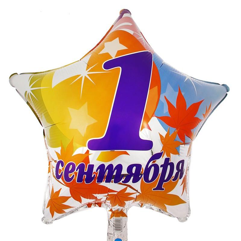 Звезда из фольги «1 сентября»1 Сентября<br>Размер: 45 см (18)Производитель: Flexmetal, Испания<br>