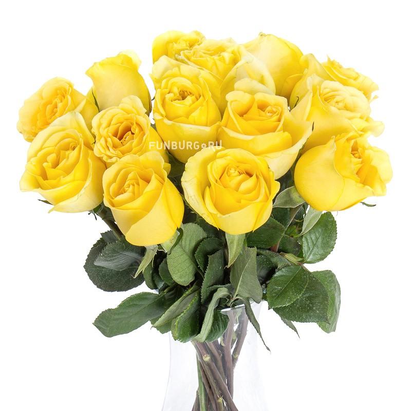 Желтые розыЦветы<br><br> Состав:<br><br><br> розы Эквадор/Голландия<br> длина стебля 60 см<br><br><br>